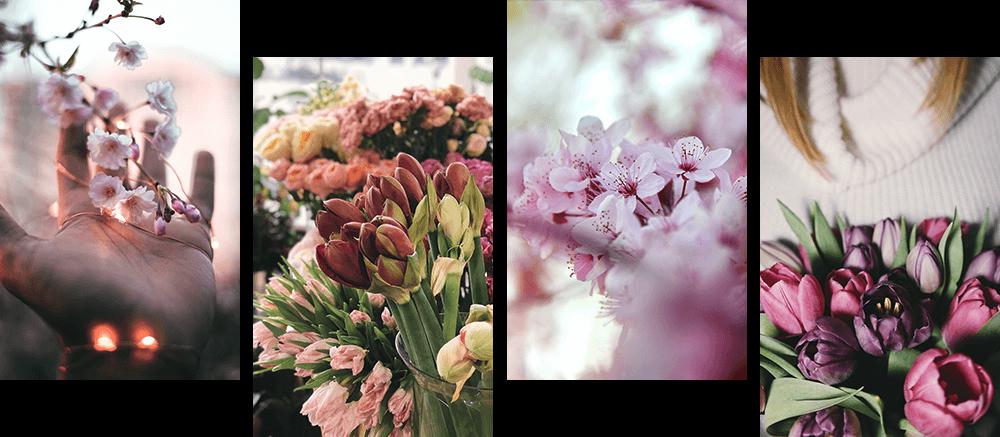 花の花4種